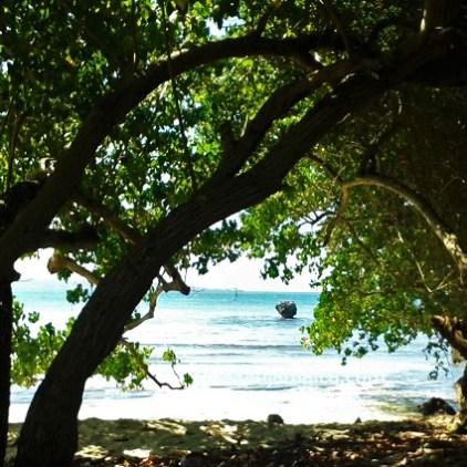 Booby Cay