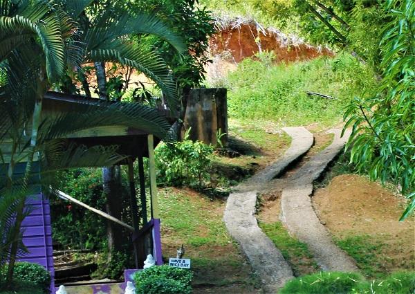Weg zu den Mayfield Falls Jamaika