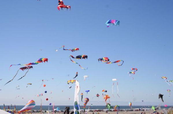 St.Ann Kite Festival