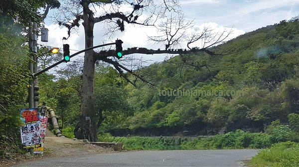 Die Flat-Bridge auf Jamaika war früher die einzige Nord-Süd- Verbindung. Sie ist nur einspurig befahrbar und wird durch eine Ampel geregelt.