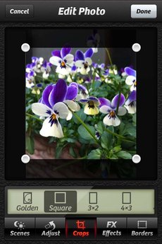 app_photo_cameraplus_8.jpg