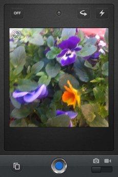 app_prod_notica_2.jpg