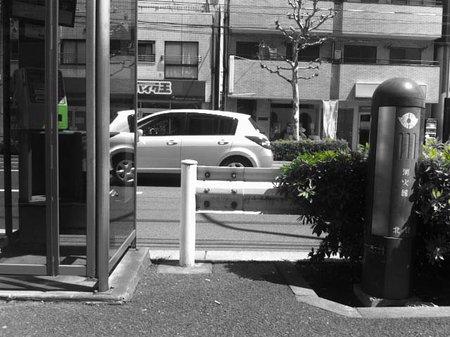app_photo_norica_5.jpg