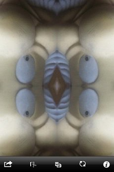 app_photo_symmetry2_8.jpg