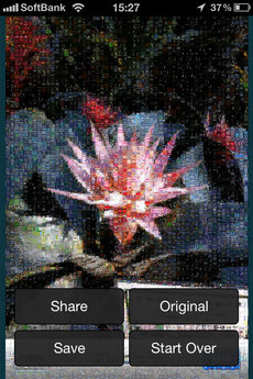 app_photo_photo_mosaica_8.jpg