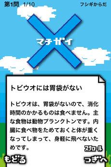 app_edu_quizoo_6.jpg