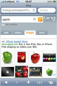 bing_optimized_4.jpg