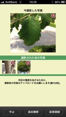 app_edu_plant_detection_11.jpg
