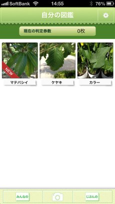 app_edu_plant_detection_13.jpg