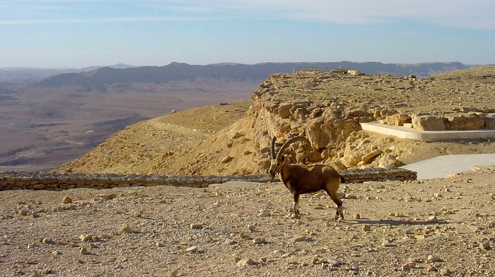 Traveling The Ancient Incense Route In The Negev