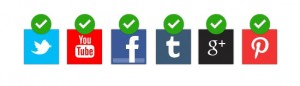 qualitative-inperson-social-media-verified