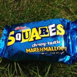 Tough Guy Marathon 2015, Marshmallow Snack