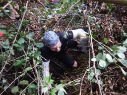 Hindernislauf Hessen, Bad Wolf Dirt Run 2015, Hindernis Bäume 2