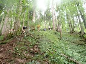 Wildsau Dirt Run, Hindernislauf Österreich, Streckenabschnitt Wald