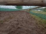 Mud Masters Obstacle Run Night Shift, Hindernislauf Deutschland, Hindernis Mud Crawl