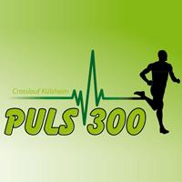 Logo Puls 300