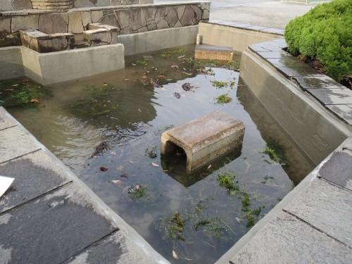 観察池の漏水修繕