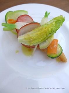 tartine legumes