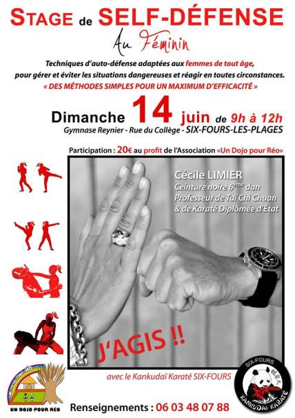 STAGE DE SELF DEFENSE
