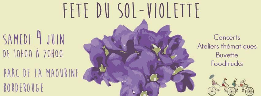 5_ans_sol_violette