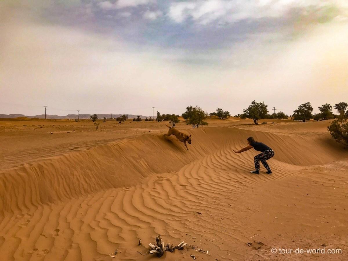 Spass-Wüste-Marokko