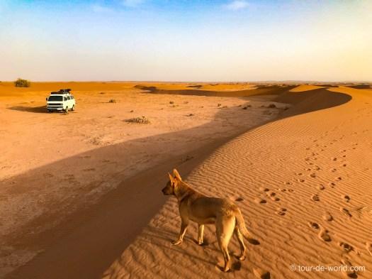 campen_in_der Wüste_Marokko