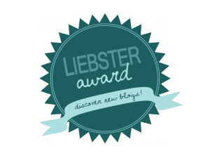 liebster 300x225 Liebster Award : Sélection voyages et plus si affinités