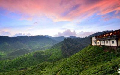 افضل الاماكن السياحية في مرتفعات كاميرون