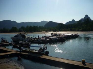 mangrove-tour