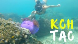 Koh Tao Thailand | A DAY IN PARADISE!