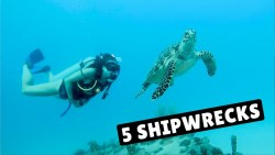 UNLIMITED SCUBA DIVING! | Barbados