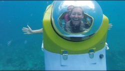 WE RODE IN A SUBMARINE! | Mauritius Blue Safari