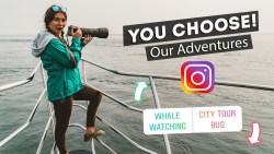 Instagram Followers CONTROL OUR TRAVELS! | Victoria, Canada