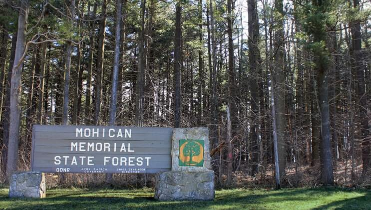 Mohican-Memorial State Forest image