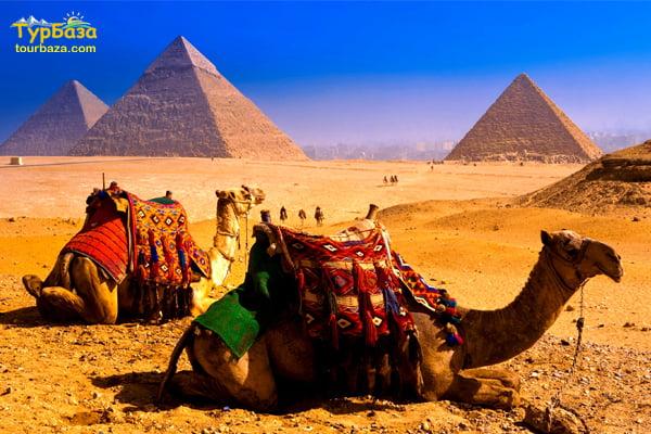 Відпочинок в Єгипті 1