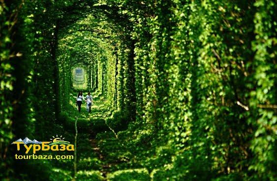 Тунель кохання Клевань