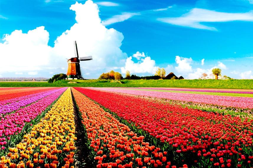 Амстердам і не тільки