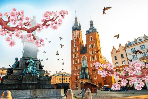 Вихідні у Кракові