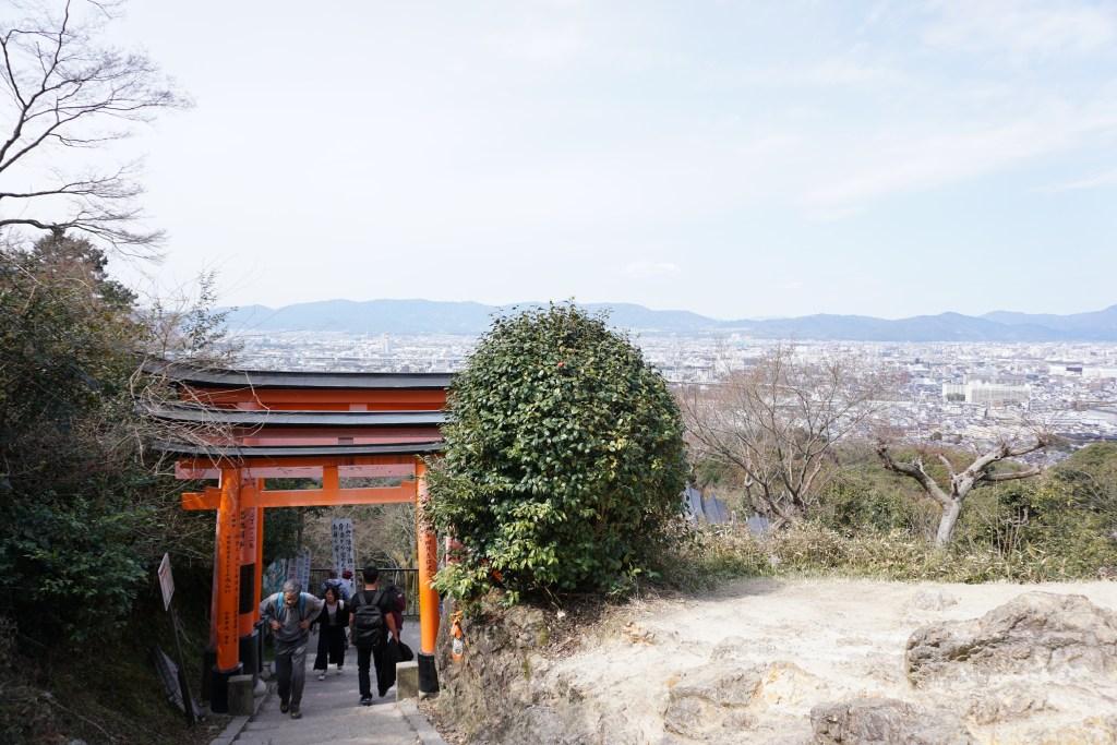 Fushimi Inari View