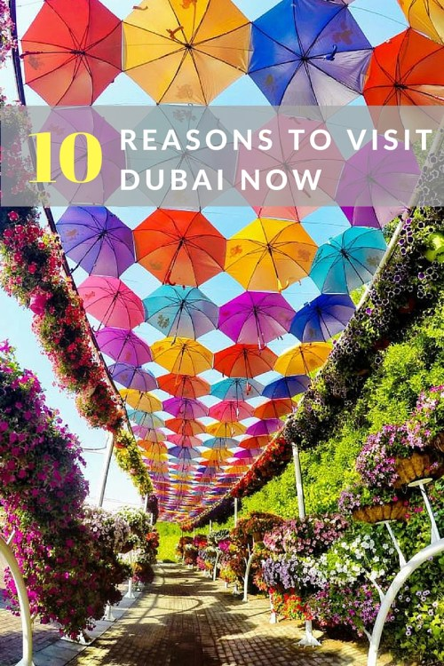 10 Reasons To Visit Dubai Now