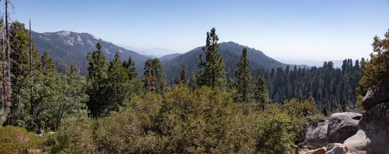 2018-09-20 - Sequoia Park-20