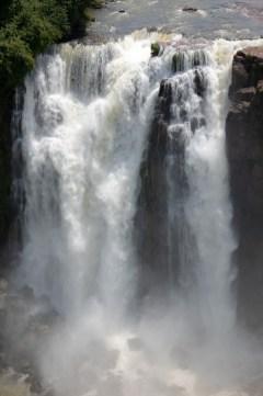 2018-11-20 - Iguaçu-19