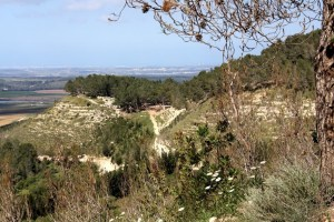View from Tel Tzorah