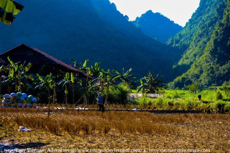 Ngoccon8 Vietnam Photos