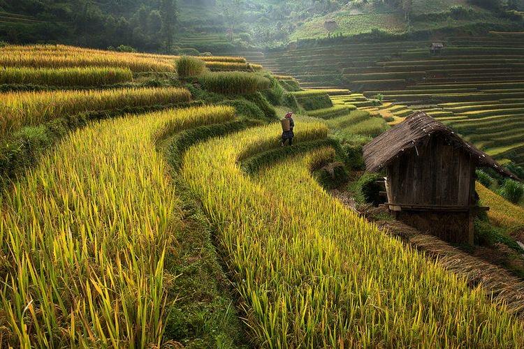 Sapa vietnam itinerary The Best 10 Day Vietnam Itinerary