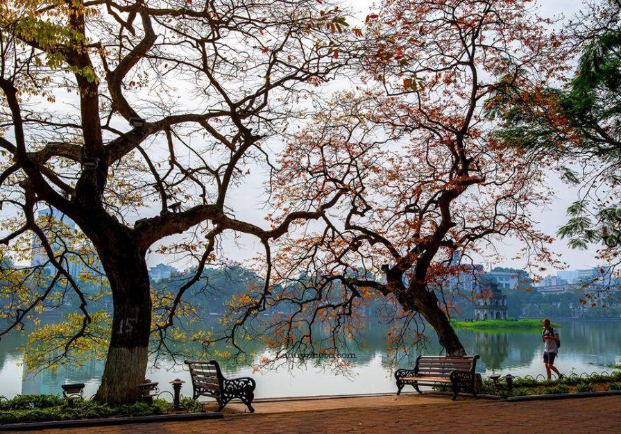 Hanoi itinerary North Vietnam Itinerary 7 Days from Hanoi