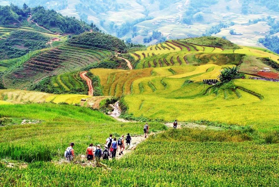 Trekking in sapa 1024x687 Top 10 things to do in Vietnam