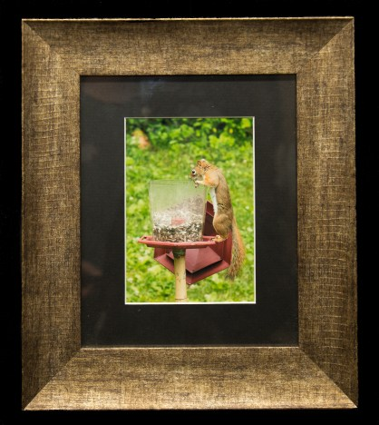 Framed and Matted-8886-Edit