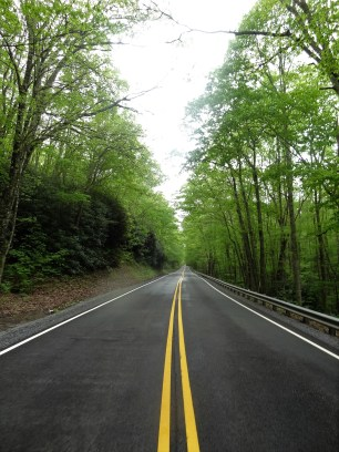 Sometimes, I actually watch the road. This is the kind of quiet road we often cycle on.