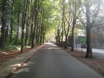 Maredsous-promenade-6-A